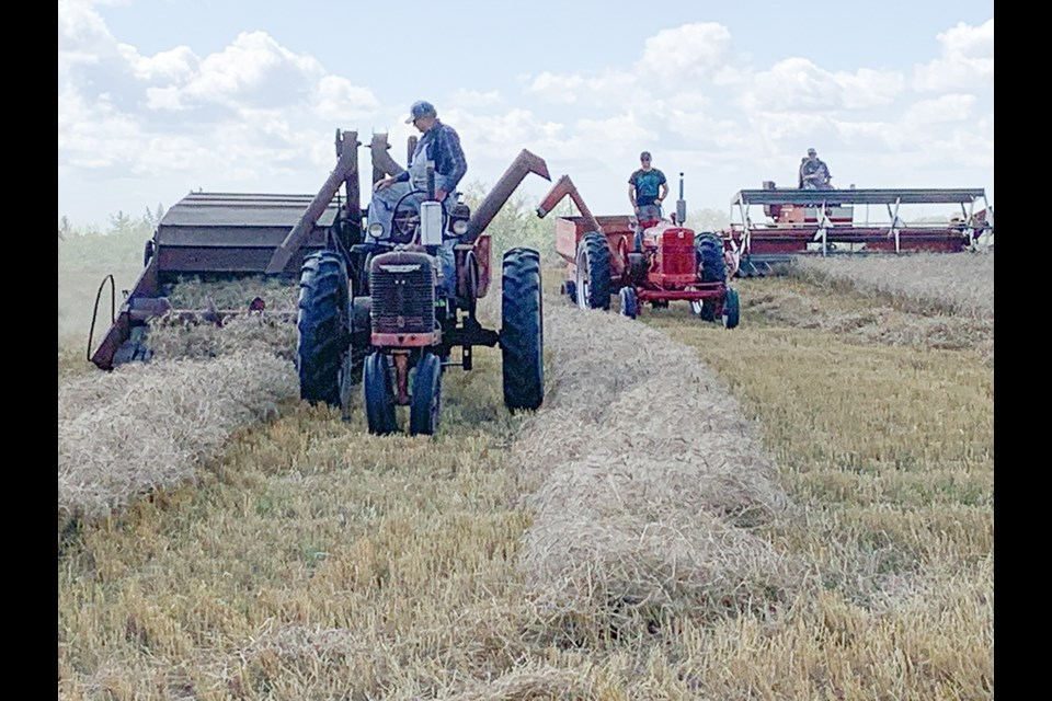 Harvesting with antique equipment at the Old Time Harvest event held on the Wilson farm.