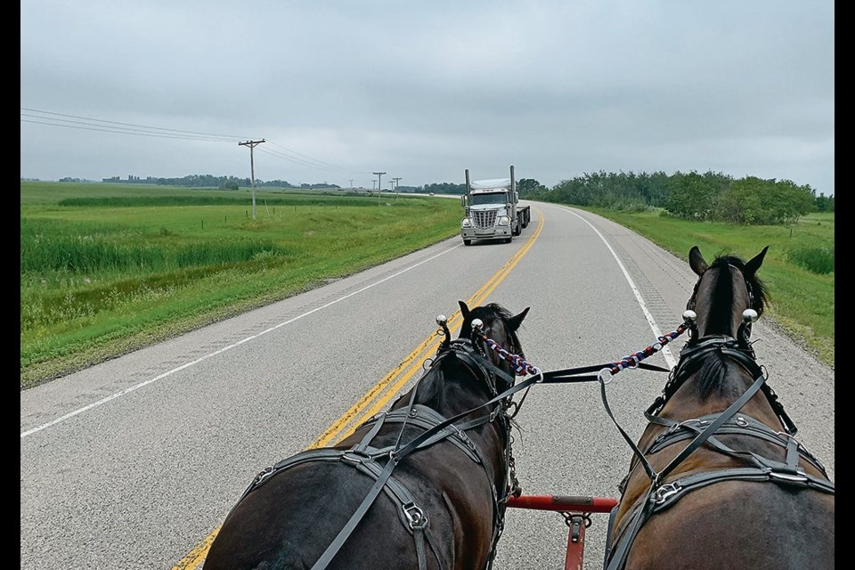Cole and Elmo, two Percheron cross horses, needed a little practice to get them accustomed to work on busy roads and highways.
