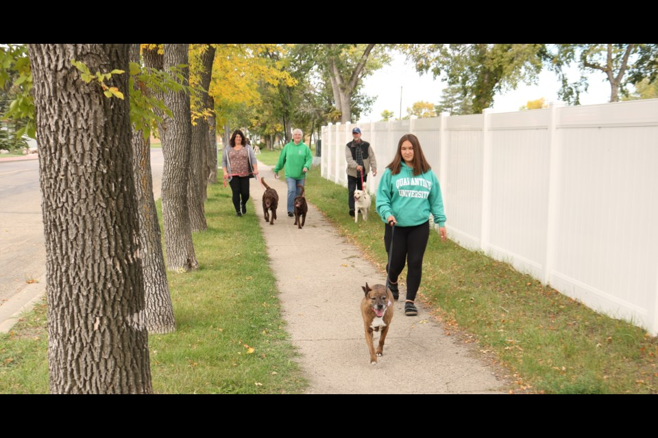 Dr. Brian's Friends For Life Annual Dog Walk 2021.