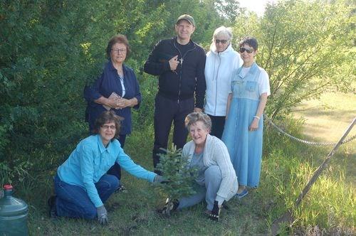 Tree planting preeceville