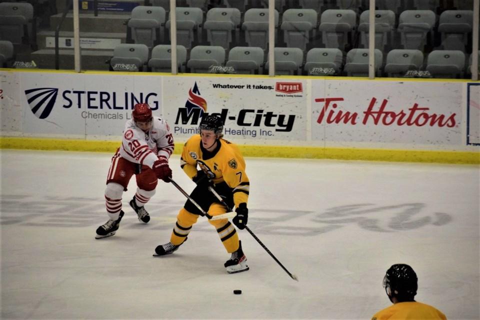 Bruins Wings pic