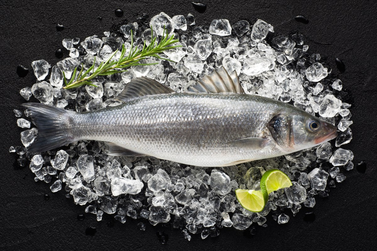 BEYOND LOCAL: Choosing which fish to eat in a sea of mercury, microplastics
