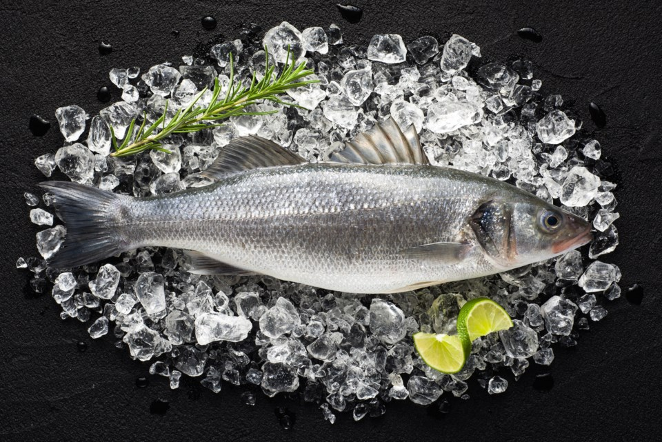 fish AdobeStock_76263069