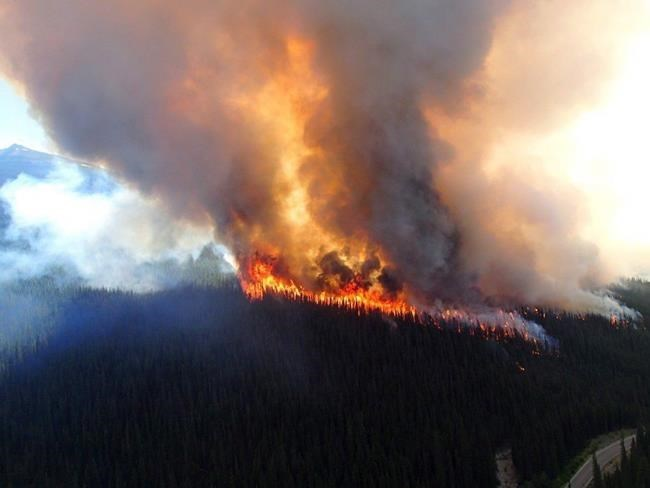 Firefighting funds depleted: Record number of wildfires in national parks