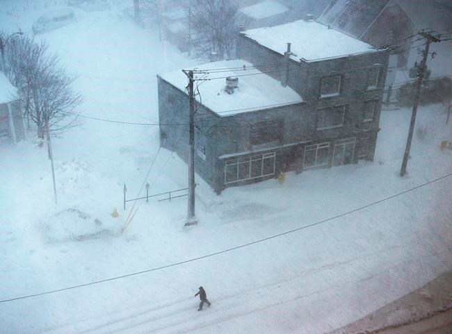 Newfoundland reeling after blizzard buries capital