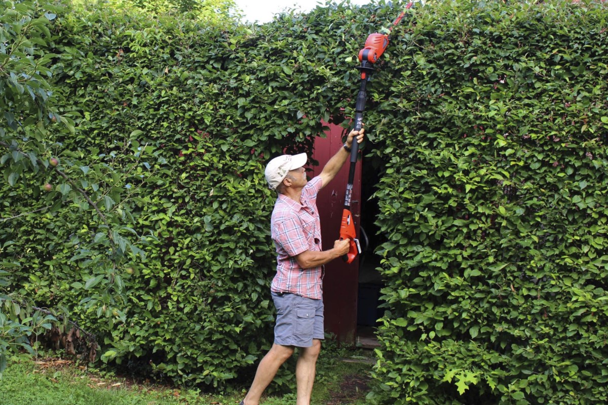 Gardening: In praise of pole pruners, and no ladder climbing