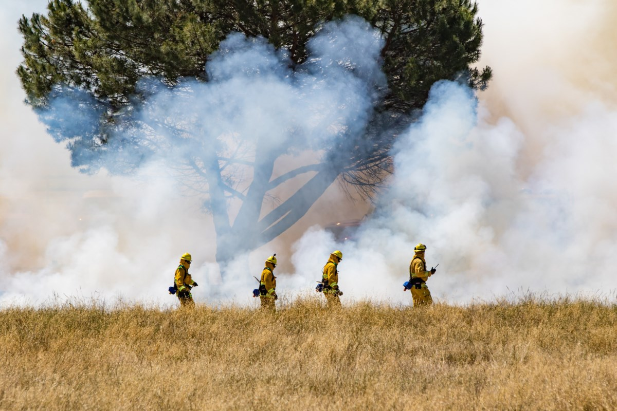 Forest fire smoke from the north affecting local air quality
