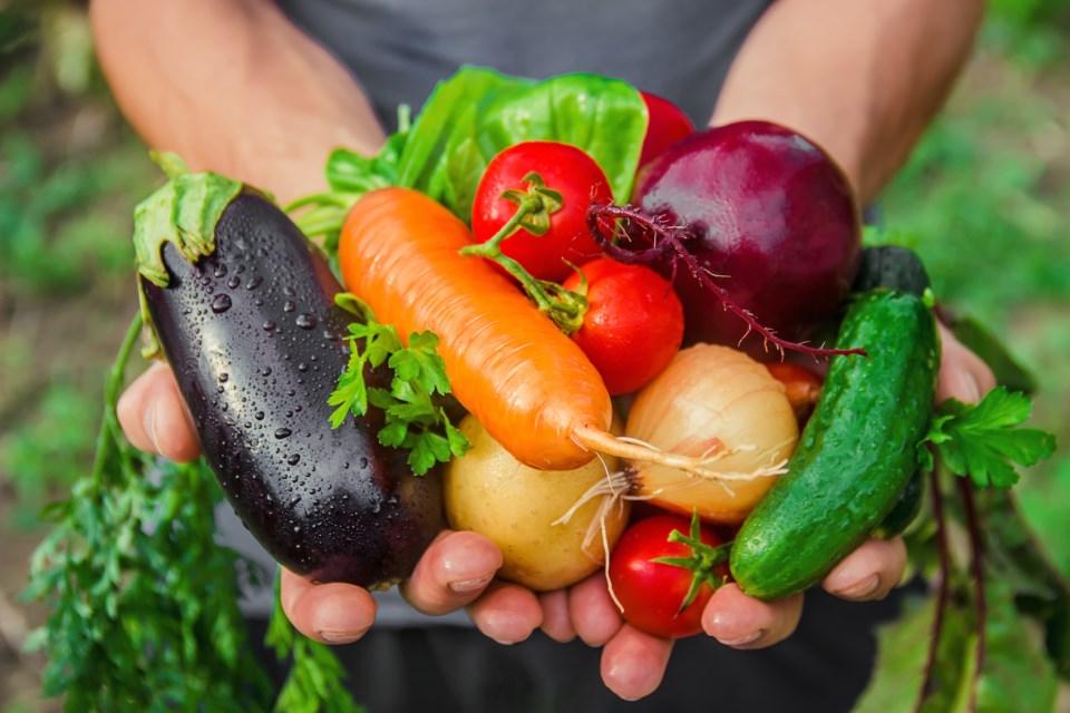 vegetables AdobeStock_218038263