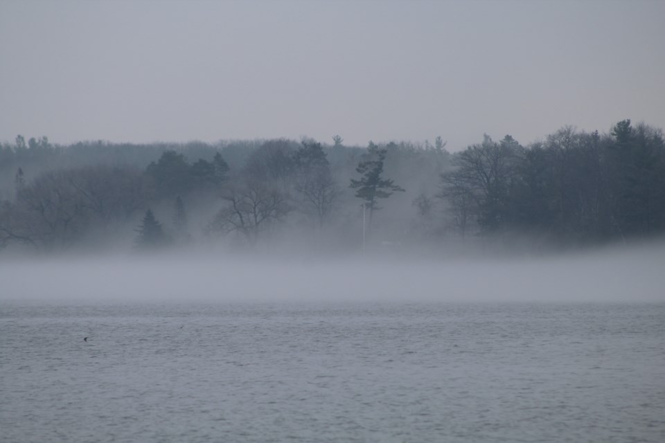 USED2018-05-03-bay-fog-rb