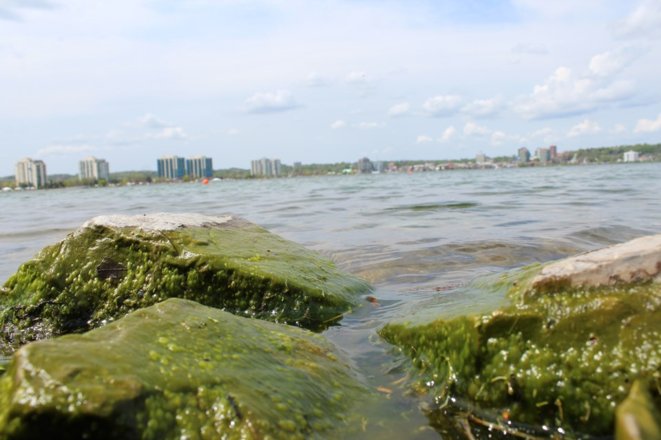 Kempenfelt Bay from the south shore in Barrie. Raymond Bowe/BarrieToday