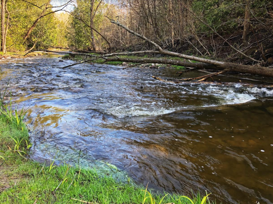 USED 2020-05-16 Lovers Creek JT 3