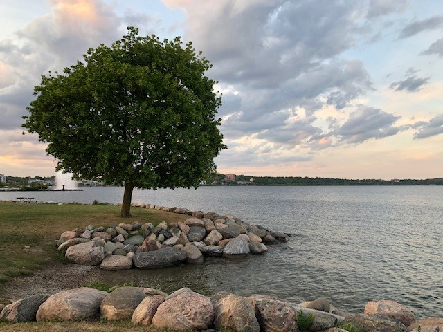 USED 2021-06-24 Centennial Park lakeshore 3 MBo