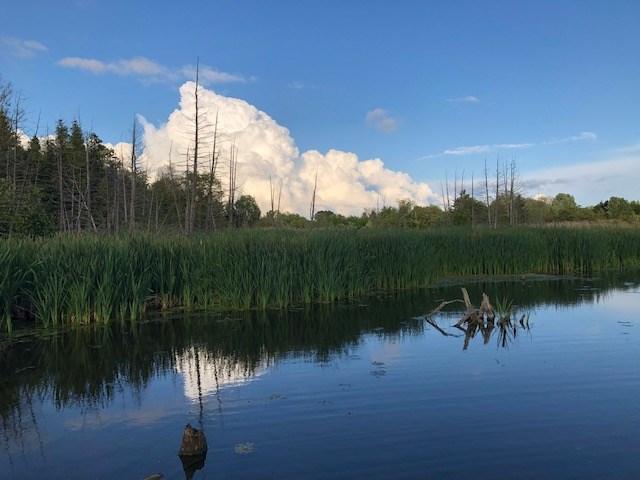 USED 2021-07-07 Bear Creek Eco Park MBo 1