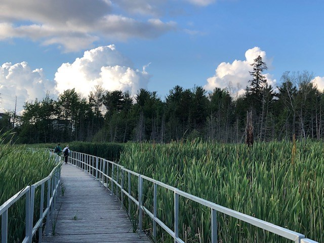 USED 2021-07-07 Bear Creek Eco Park MBo 3