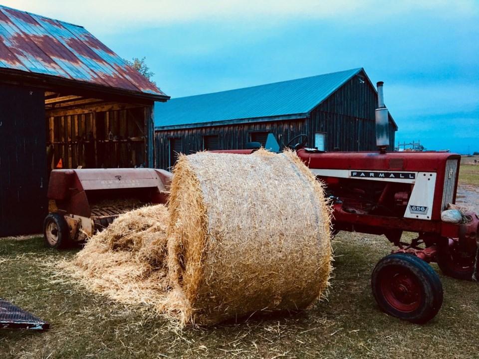 USED 2018-10-13-early morning farm