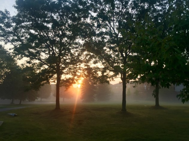 USED 2019 09 11 Misty morning SC