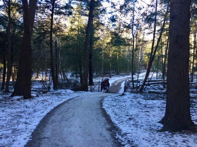 USED 20190113 Kerwin trail path 3