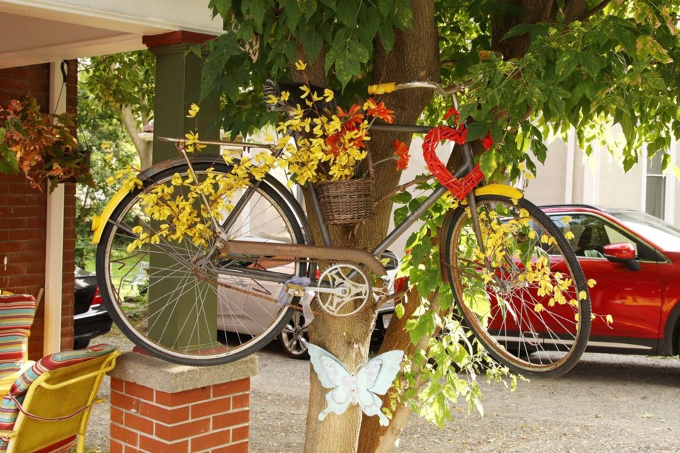 USED 2020 09 13 bicycle in tree GK