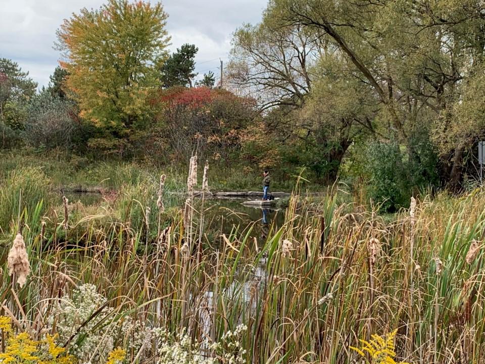 USED 2020 09 30 Holland River man DK