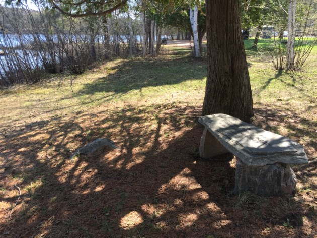 USED 2019-05-16goodmorning  4 Memory bench Trout Lake. Photo by Brenda Turl for BayToday.