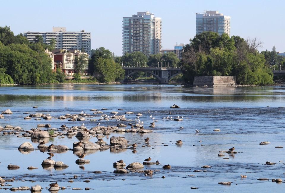 USED 2020-07-20 Strathcona Park mv6