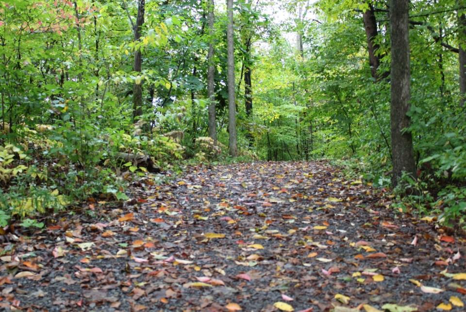 USED 2021-09-27 Beryl Gaffney Park MV1
