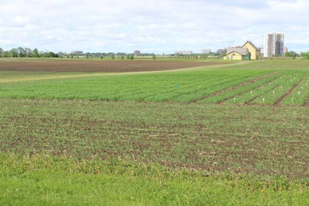 USED 2019-06-10 experimental farm MV1