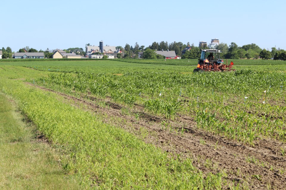 USED 2019-07-15 Experimental Farm MV7