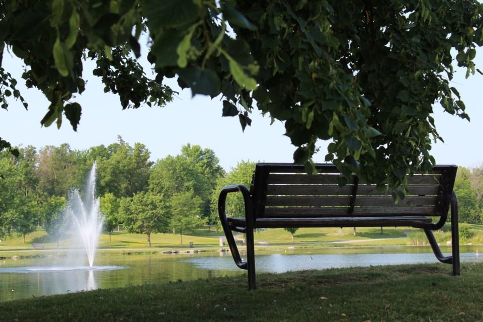 USED 2019-07-26 Andrew Haydon Park summer MV7