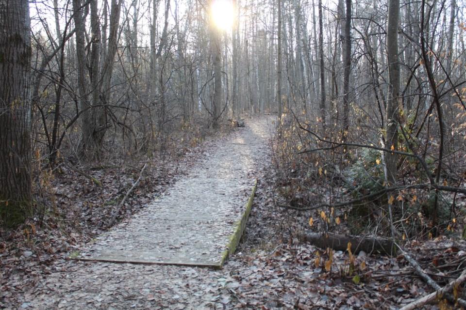 USED 2019-12-11 Nepean Sportsplex trail MV3
