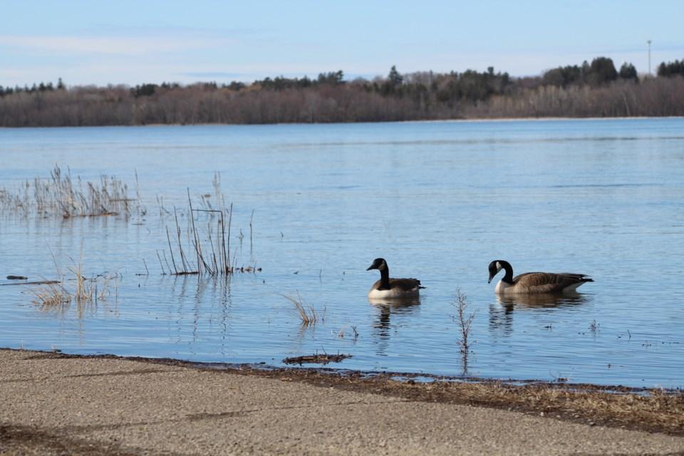USED 2020-04-06 Ottawa River MV3