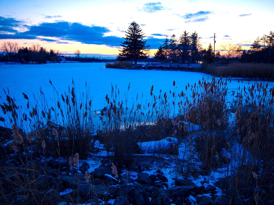 USED pond-winter