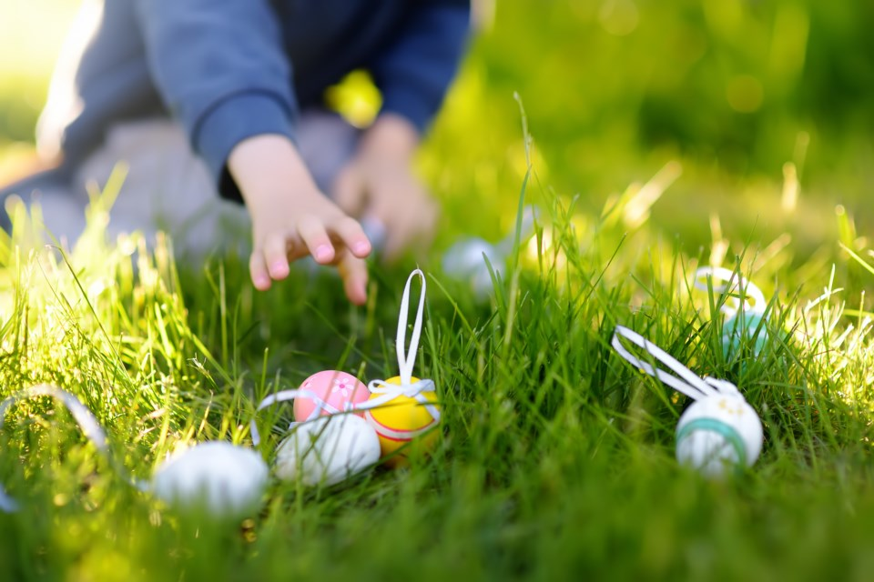 Easter eggs AdobeStock_317661161