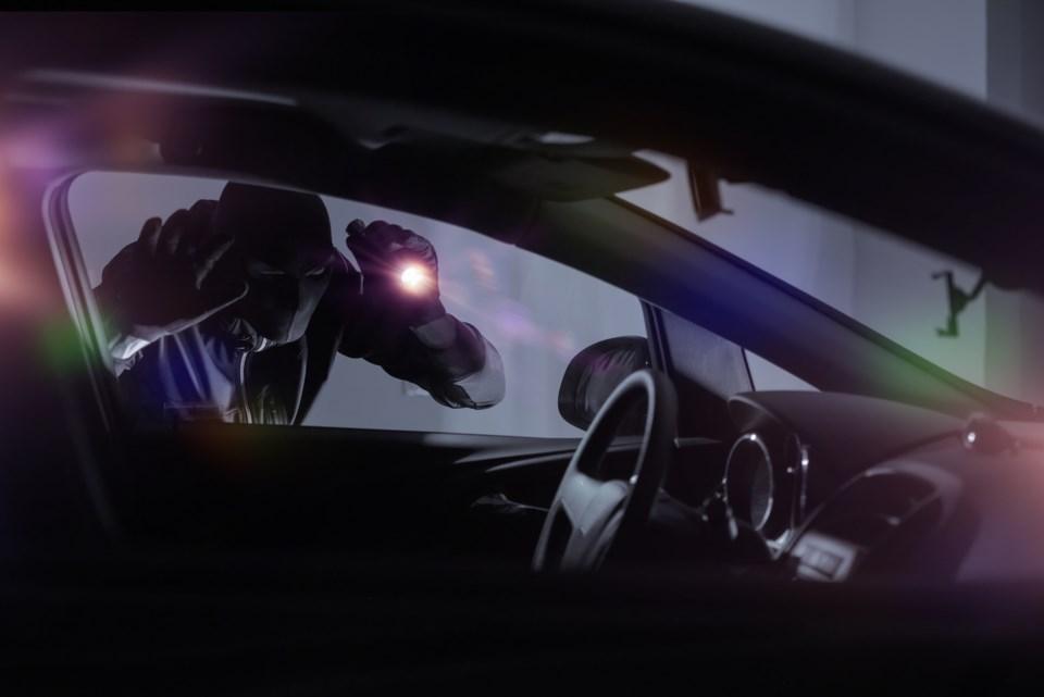 auto theft burglar