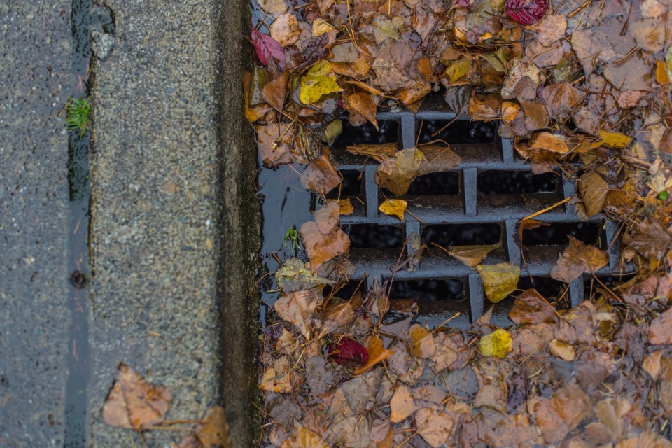 clogged storm drain leaves