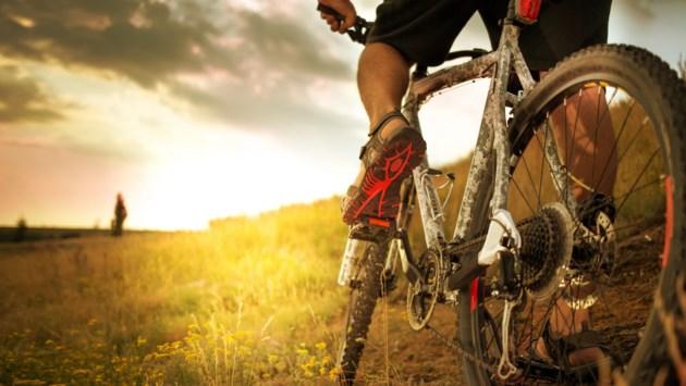 cycling AdobeStock_250861639