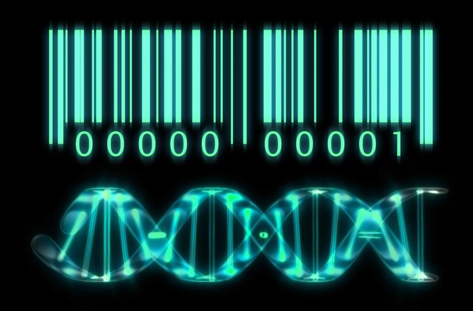 DNAbarcode