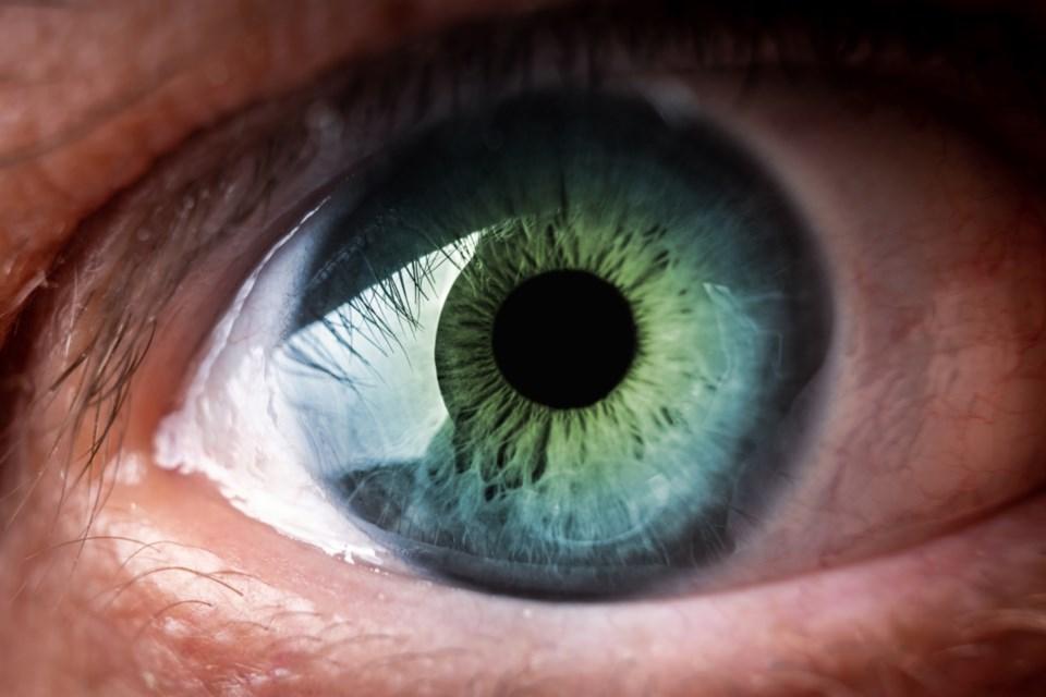 eye iris stock