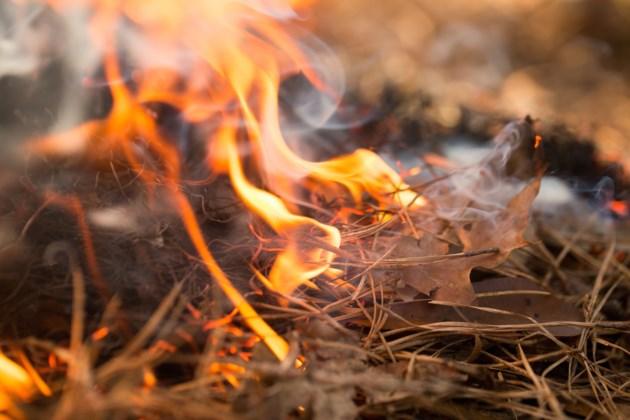 fire ban AdobeStock_102102470