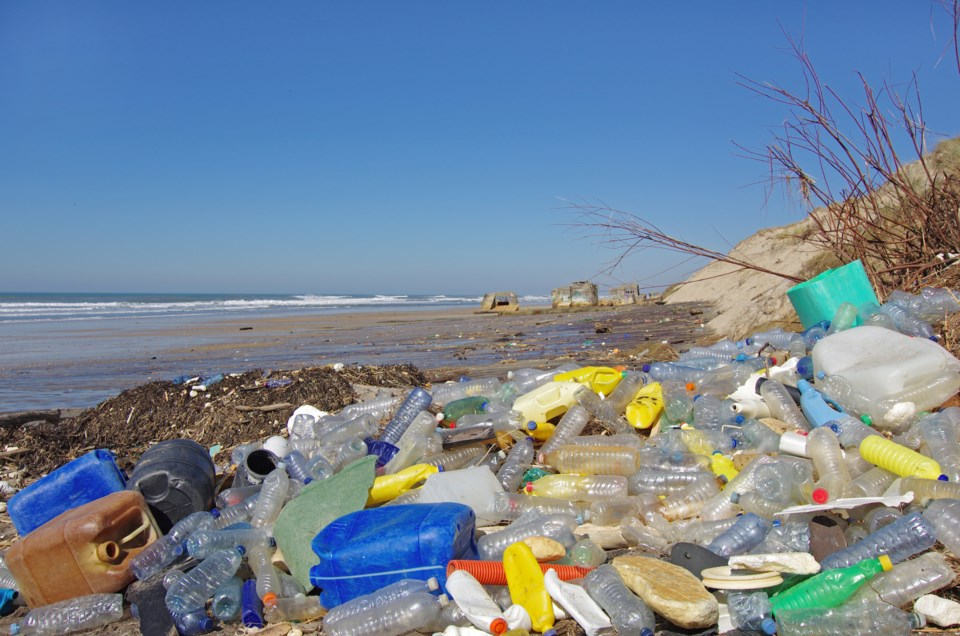 PlasticTrash on lakeshore