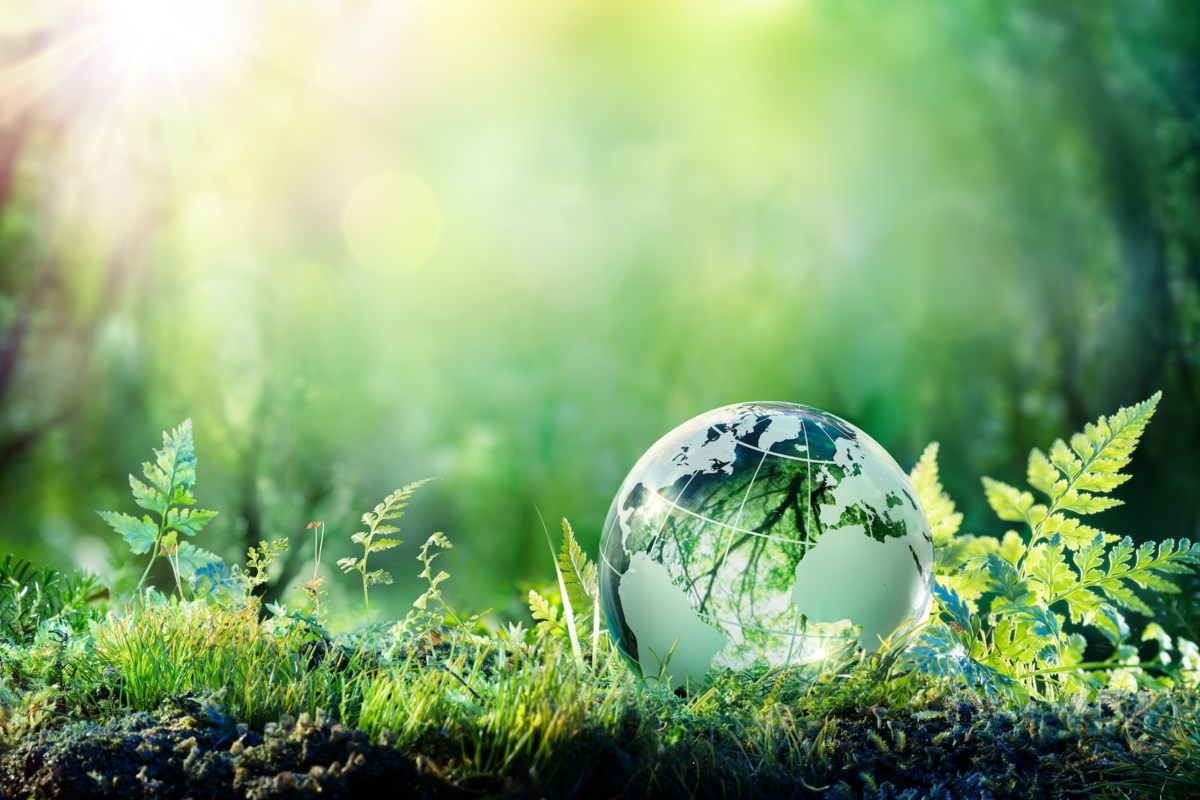 sustainability jpeg;w=1200;h=800;mode=crop.