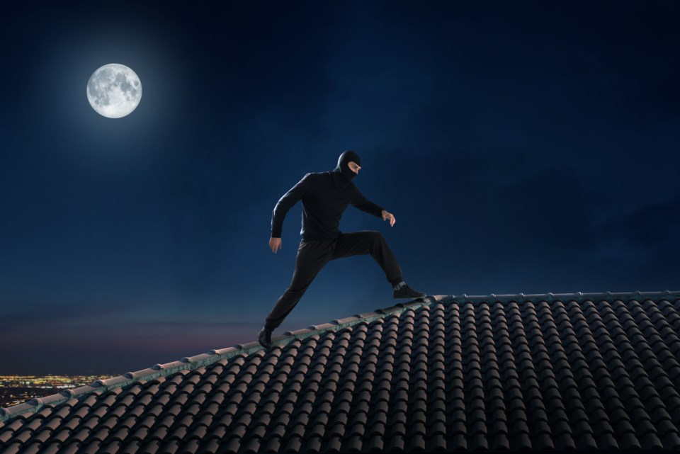 thief on a rooftop in the moonlight