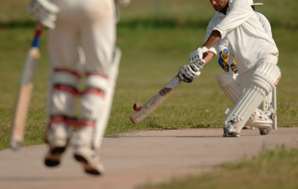 cricket AdobeStock
