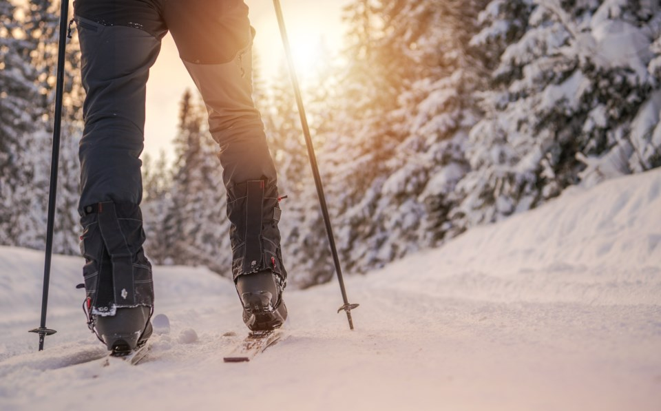 cross country skiing AdobeStock_243108732