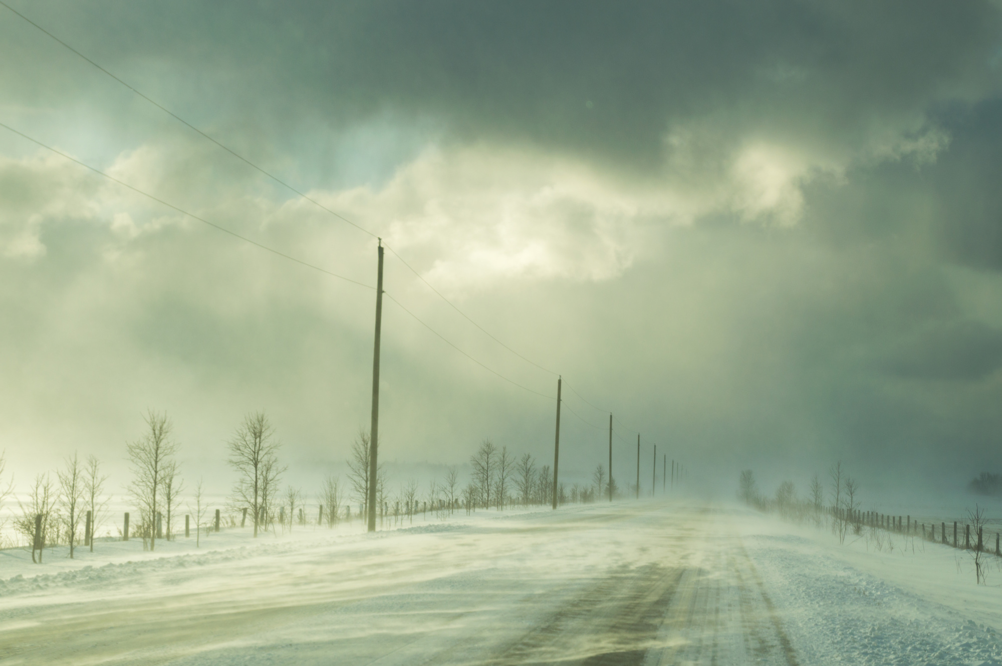Snow squall warning in effect: Environment Canada