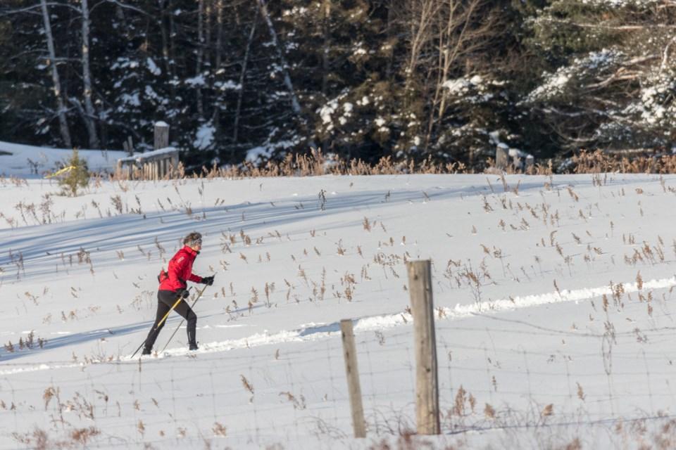 Cross Country Skiing at Hiawatha Highlands Jan. 22, 2021.