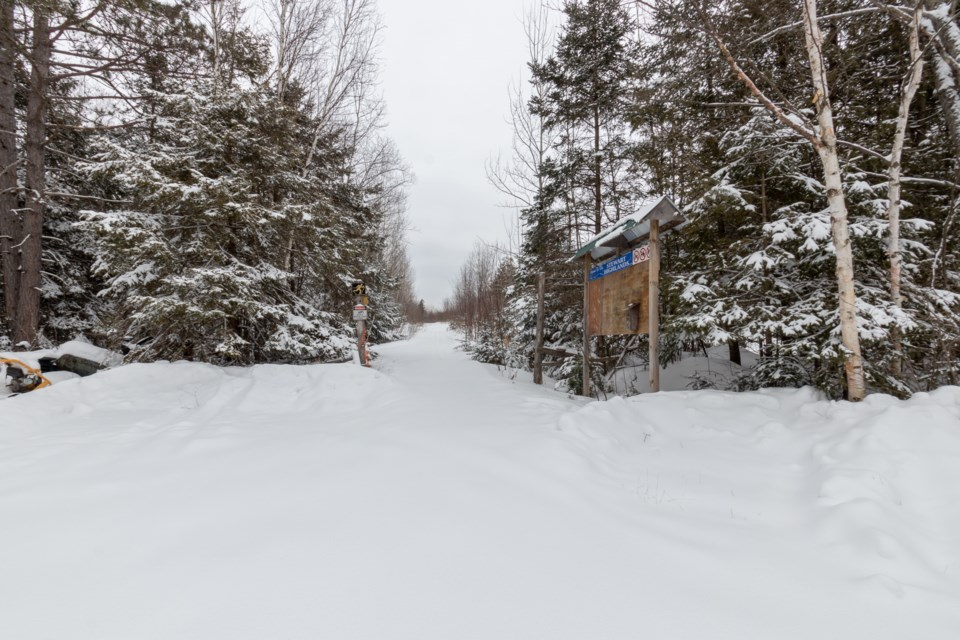 Stewart Highlands Cross Country Ski Trails.