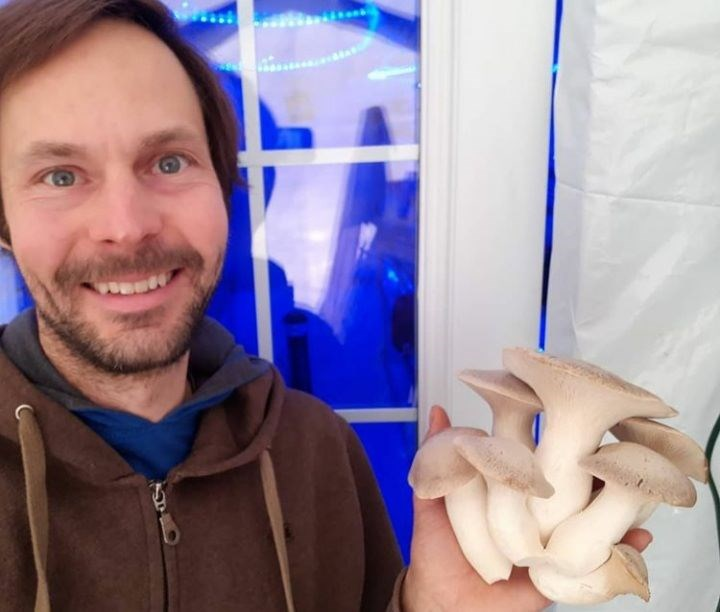 John Findlay proudly showing off a king oyster mushroom behind the blue lights of his fruiting room