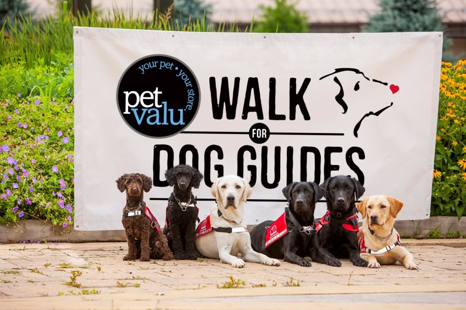 The 34th annual Pet Valu Walk for Dog Guides takes place on Sunday, May 26 at Wellesley Park in the Wakamow Valley starting at 9 a.m. The walk here is one of nearly 300 taking place across Canada.