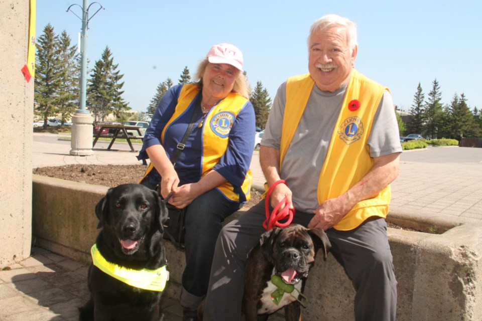 Hedi Kment with Tink, her English Labrador dog guide, and John Atkins, long standing Lions Club member with Beauty, a five year old Boxer, at the Pet Valu Walk for Dog Guides held at the Roberta Bondar Pavilion and the Sault Ste. Marie waterfront, May 27, 2018. Darren Taylor/SooToday